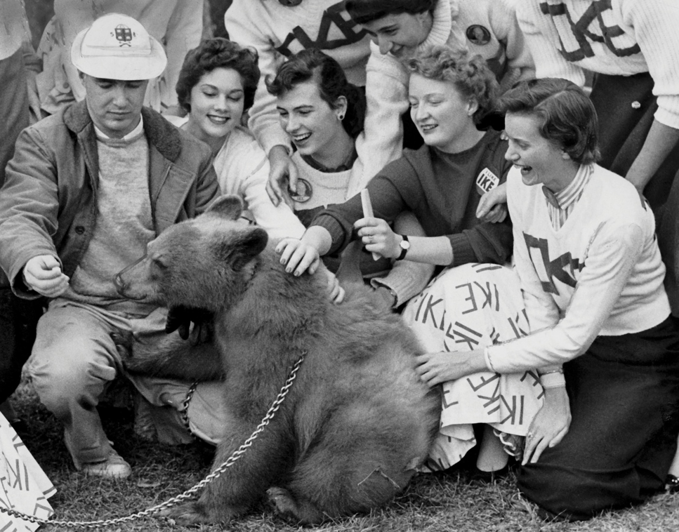 A vintage photograph of a bear being petted by humans.