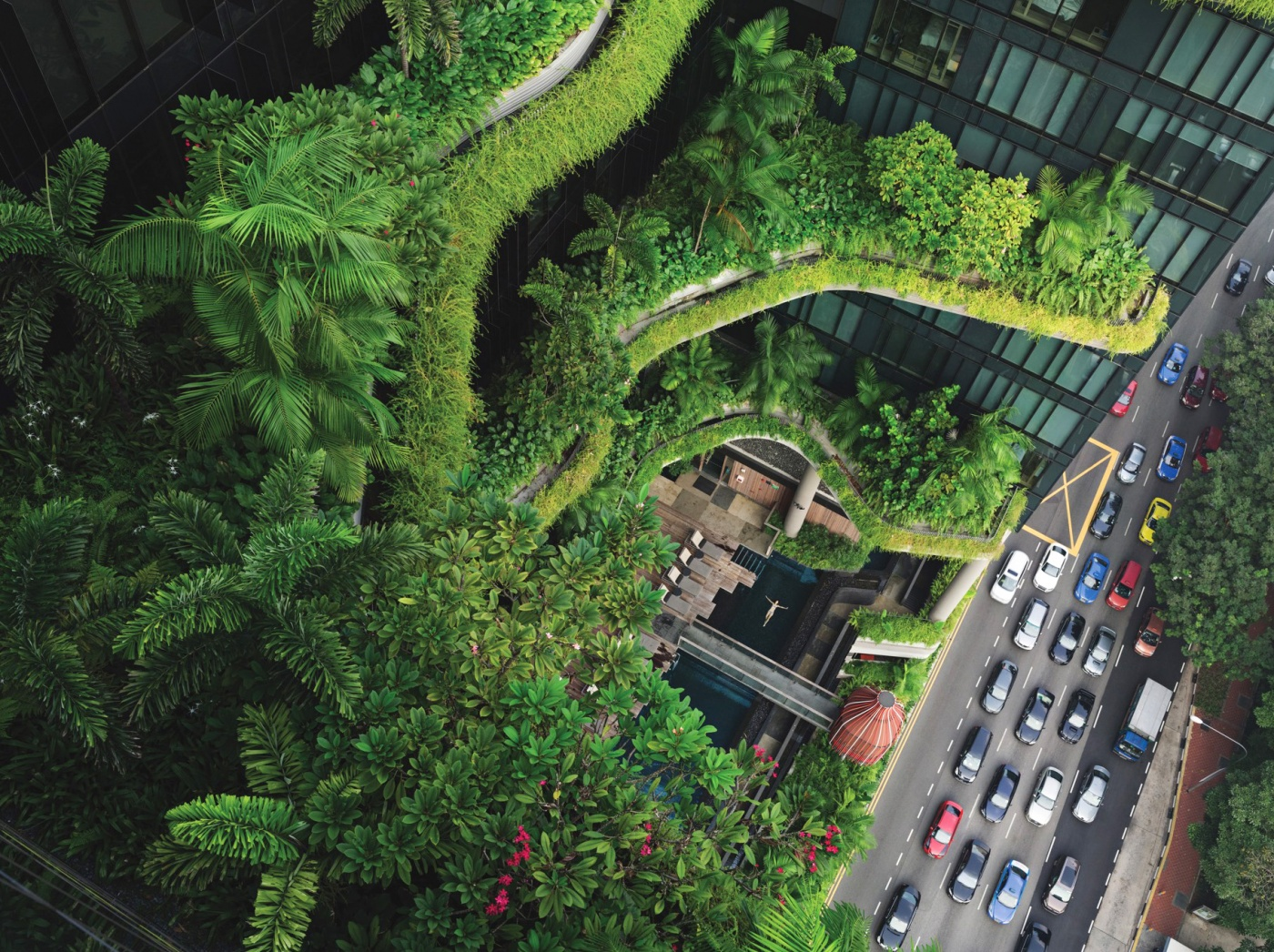 An overhead photograph of a foliage-covered building with a woman floating in a swimming pool, next to a car-filled street.